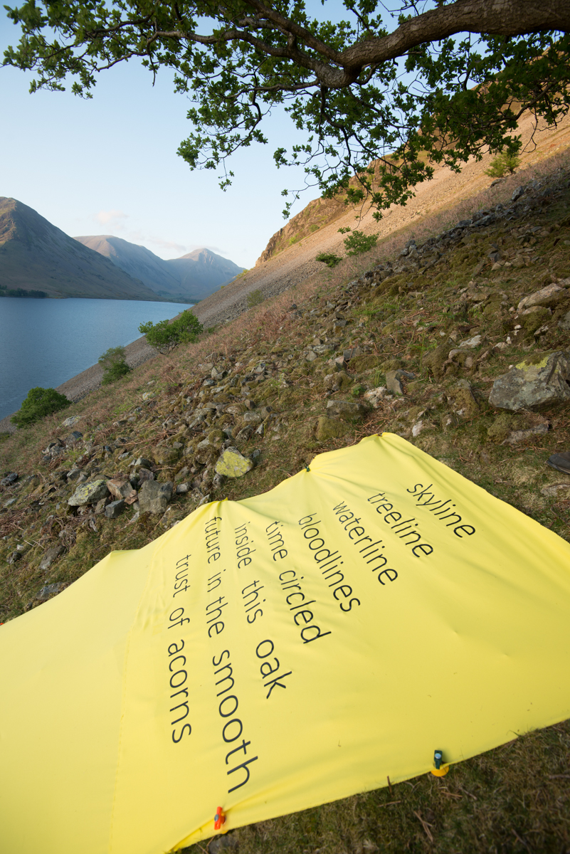 The yellow line in Wasdale, The Long View poetry