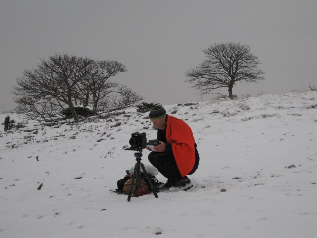 rob fraser photographing trees