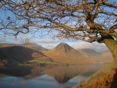 View from Wasdale Oak to Great Gable