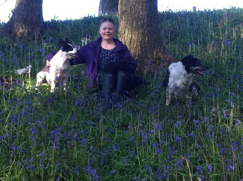 claire bowker at her beech tree