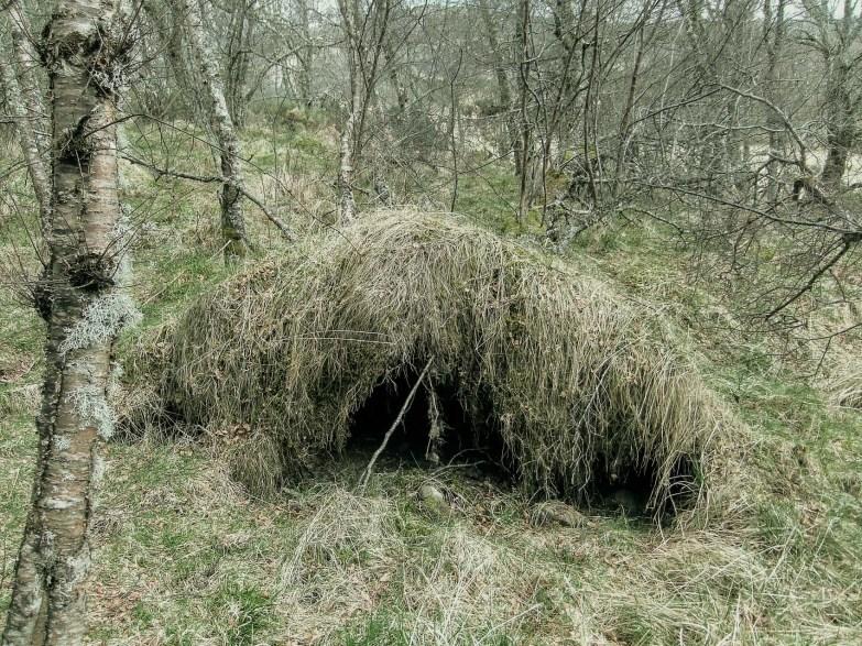 Rachael Clyne's Birch Moniack Mhor Invernesshire
