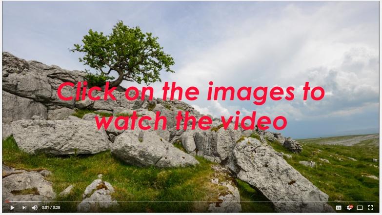 Orton School video link