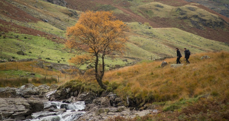at the Langstrath Birch with Natural England Adviser, Jean Johnson