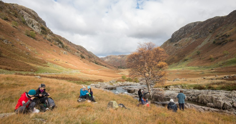 Meeting the Langstrath Birch, one of seven trees from The Long View