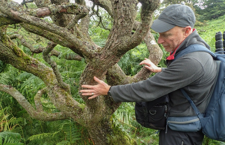 Rob Fraser at a Hawthorn in Glencoyne Park