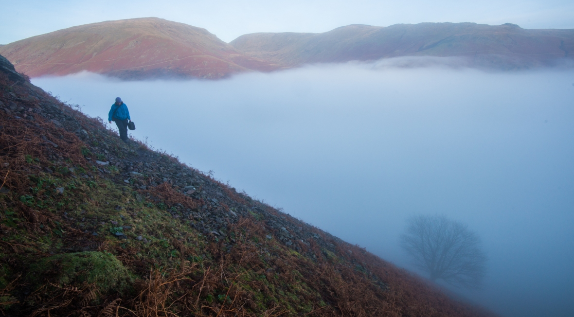 Under Helm Crag with the Under Helm Sycamore in mist