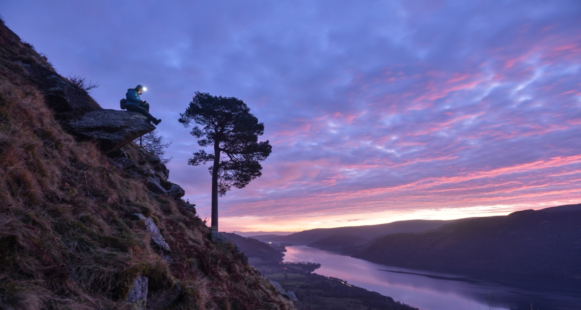 Writing at the Glencoyne Pine while the sun rises in midwinter