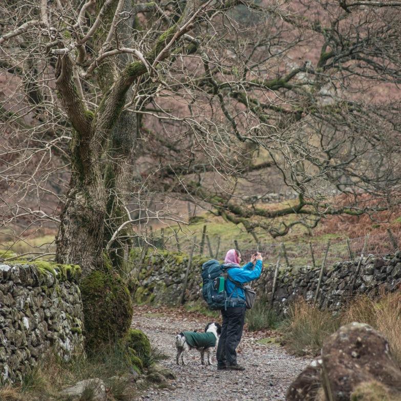 Walking to the Langstrath Birch