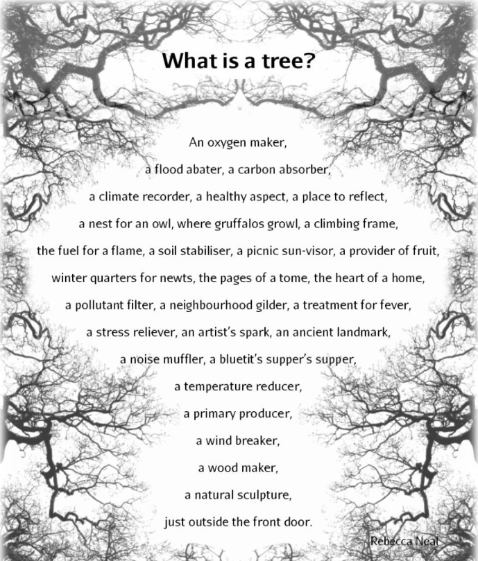 Rebecca Neale poem: 'What is a tree?'