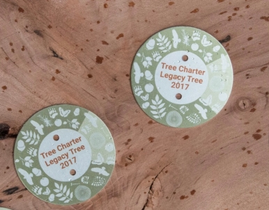 tree charter legacy tags
