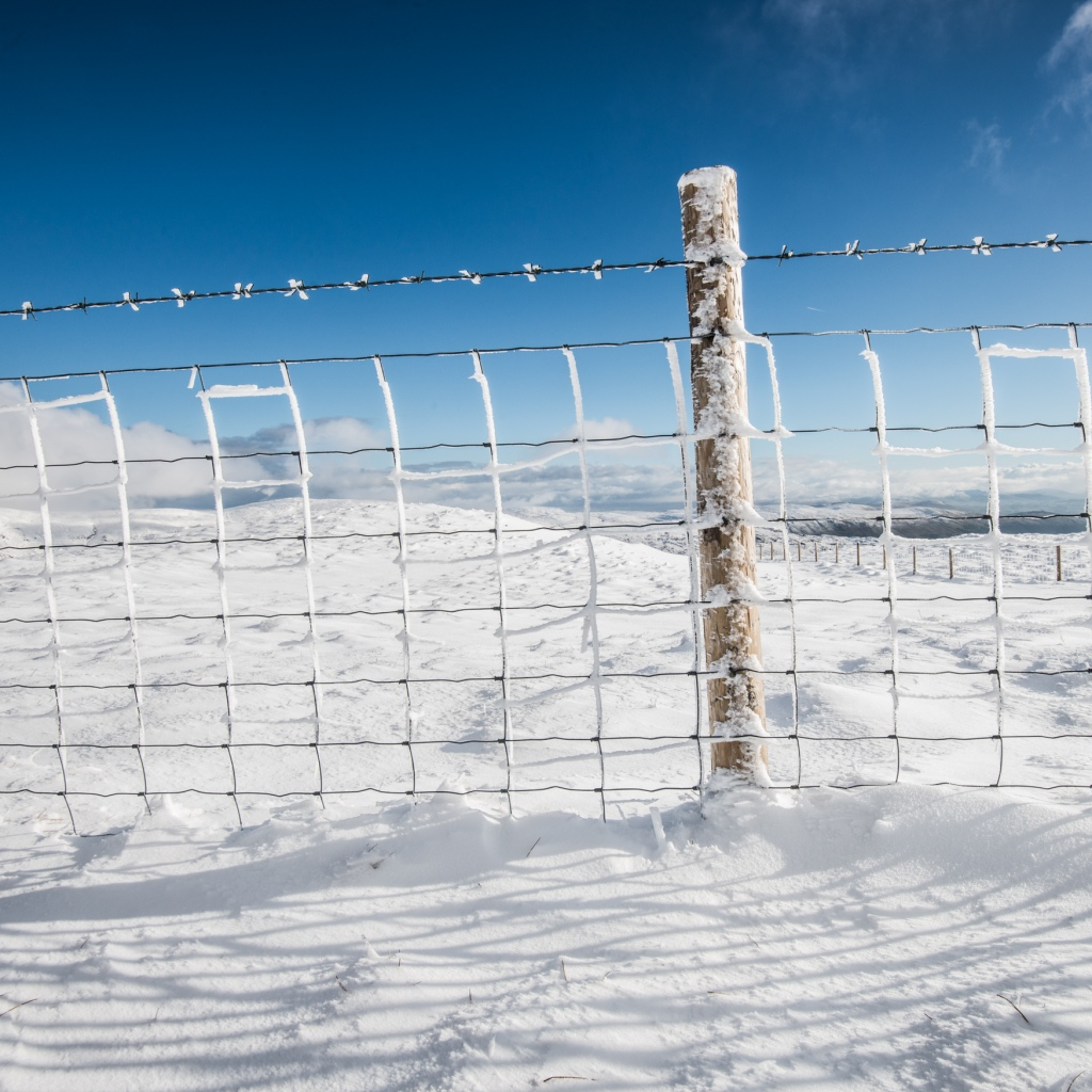 Rime ice on the fence at Ill Bell.