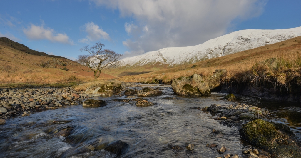Trout Beck Alder on the Sunday afternoon.