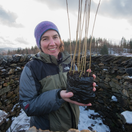 Harriet holding a bundle of aspens inside treefold:centre. One was p[lanted in the sculpture and the other nine went into the nearby FCE planting scheme.