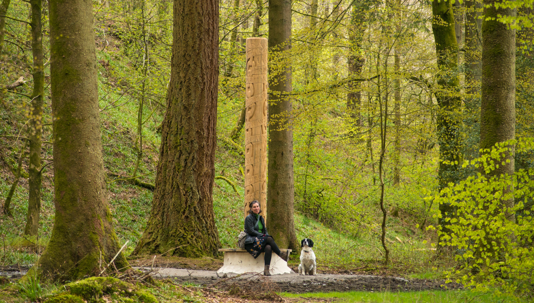 Grizedale Tree Pole with Harriet Fraser