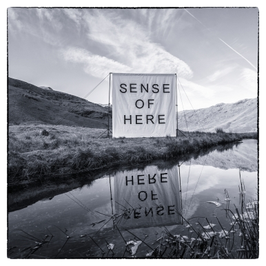 Sense of Here canvas on location